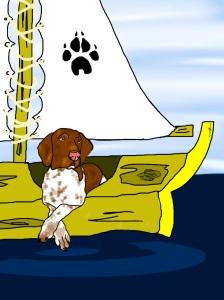 Raspi no barco